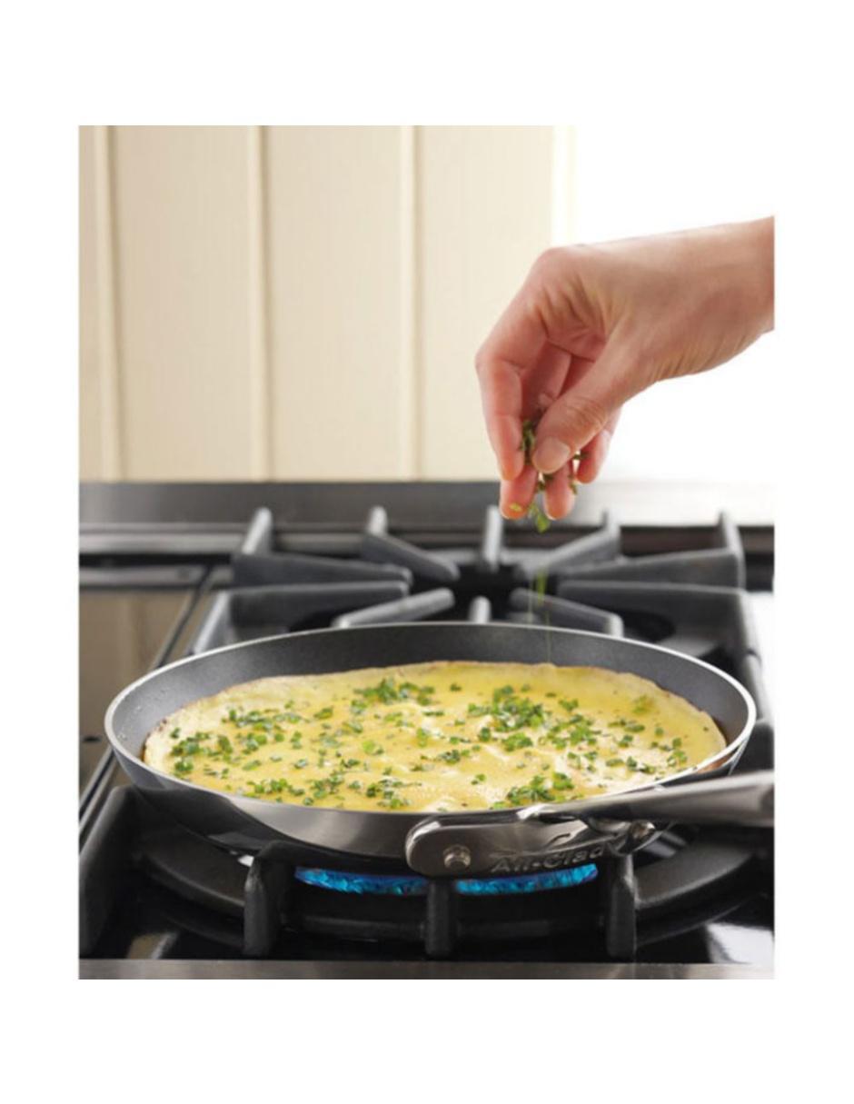 Sartén para Omelettes All-Clad d5